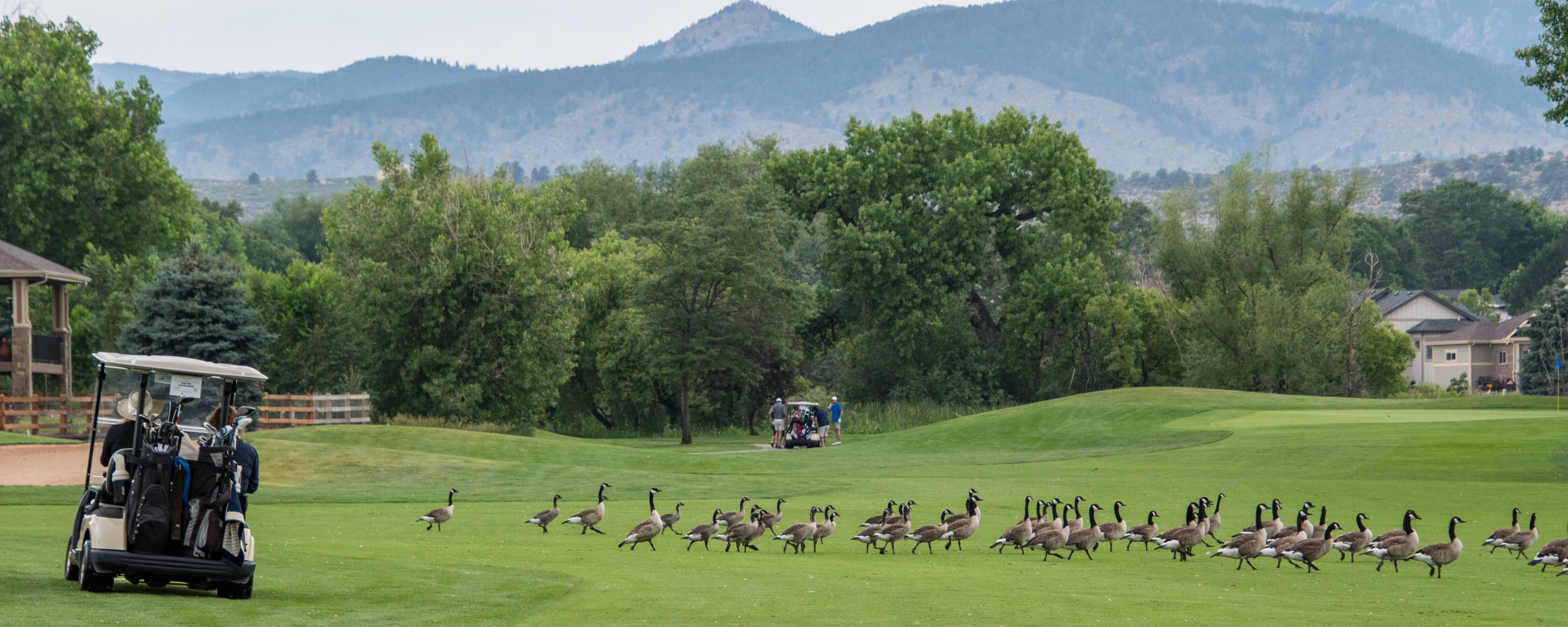 20180622LCCGolf DSC_5192untitled